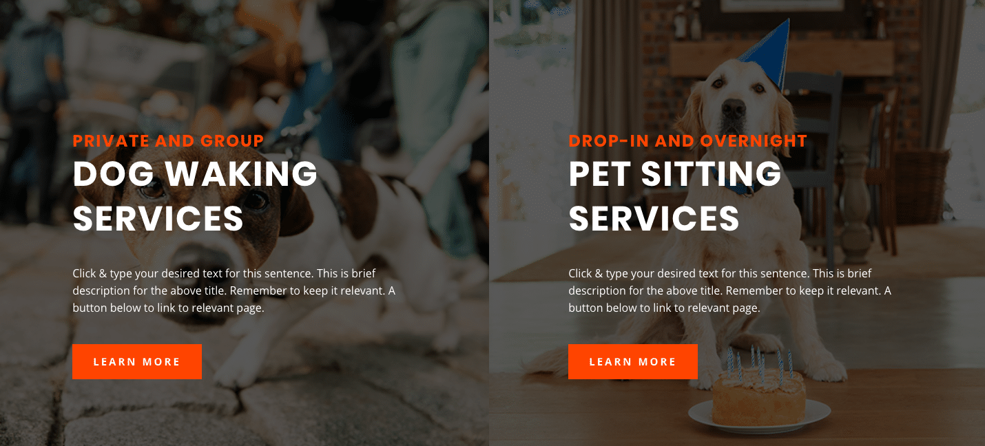 New Website Setup Form 51