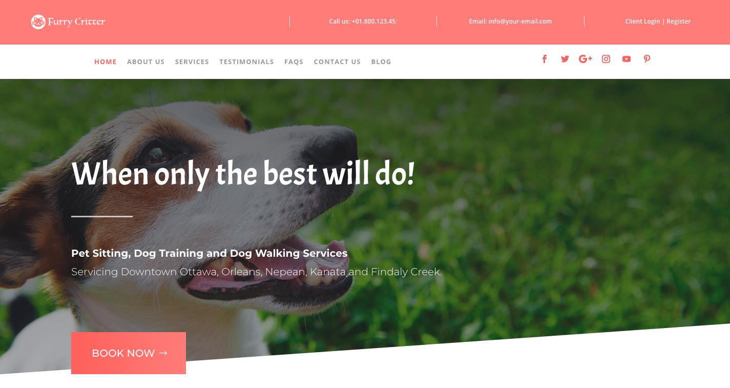 New Website Setup Form 28