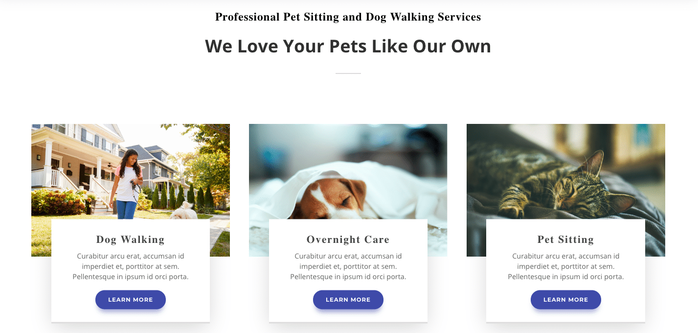 New Website Setup Form 22