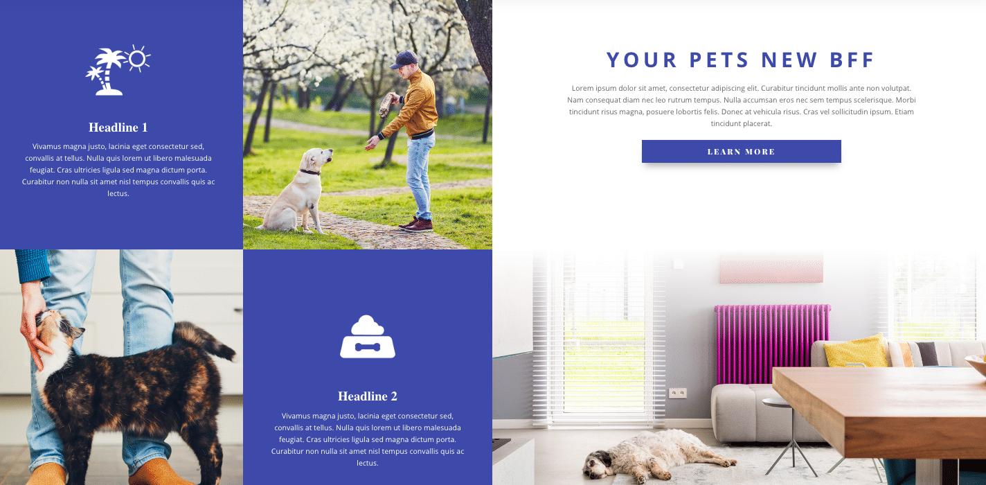 New Website Setup Form 23