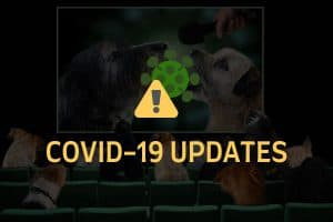 Pet industry events 2020 covid-19 updates